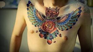пример рисунка тату сова на груди 15.02.2021 №0040 - owl tattoo on chest - tatufoto.com
