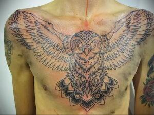 пример рисунка тату сова на груди 15.02.2021 №0045 - owl tattoo on chest - tatufoto.com