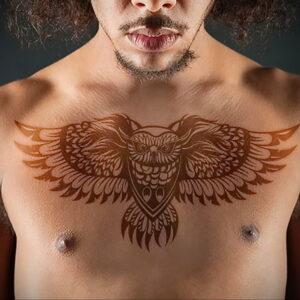 пример рисунка тату сова на груди 15.02.2021 №0048 - owl tattoo on chest - tatufoto.com