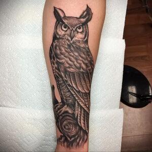 пример рисунка тату сова на руке 15.02.2021 №0068 - owl tattoo on arm - tatufoto.com