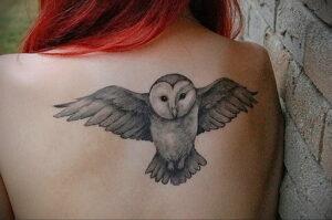 пример рисунка тату сова на спине 15.02.2021 №0014 - owl tattoo on back - tatufoto.com