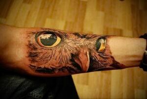 пример рисунка тату сова реализм 15.02.2021 №0017 - owl tattoo realism - tatufoto.com