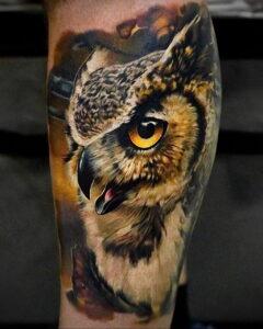 пример рисунка тату сова реализм 15.02.2021 №0018 - owl tattoo realism - tatufoto.com