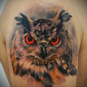 пример рисунка тату сова реализм 15.02.2021 №0021 - owl tattoo realism - tatufoto.com