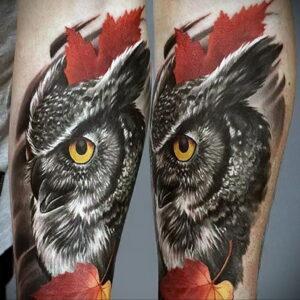 пример рисунка тату сова реализм 15.02.2021 №0040 - owl tattoo realism - tatufoto.com