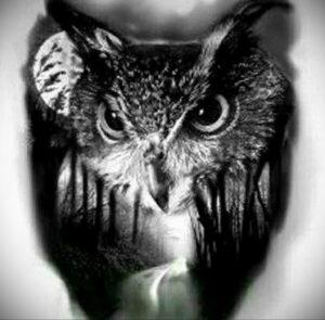 пример рисунка тату сова реализм 15.02.2021 №0042 - owl tattoo realism - tatufoto.com