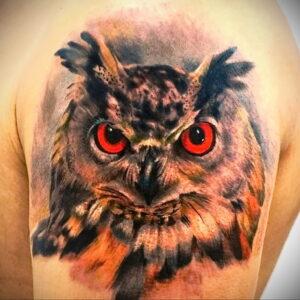пример рисунка тату сова реализм 15.02.2021 №0046 - owl tattoo realism - tatufoto.com