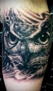 пример рисунка тату сова реализм 15.02.2021 №0047 - owl tattoo realism - tatufoto.com