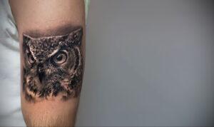 пример рисунка тату сова реализм 15.02.2021 №0049 - owl tattoo realism - tatufoto.com