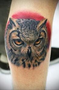 пример рисунка тату сова реализм 15.02.2021 №0054 - owl tattoo realism - tatufoto.com