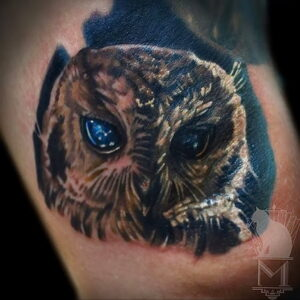 пример рисунка тату сова реализм 15.02.2021 №0056 - owl tattoo realism - tatufoto.com