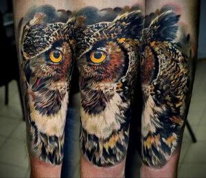 пример рисунка тату сова реализм 15.02.2021 №0080 - owl tattoo realism - tatufoto.com