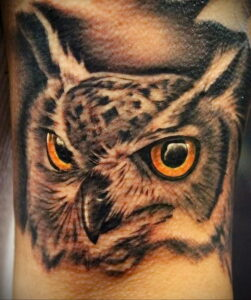 пример рисунка тату сова реализм 15.02.2021 №0087 - owl tattoo realism - tatufoto.com