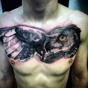 пример рисунка тату сова реализм 15.02.2021 №0088 - owl tattoo realism - tatufoto.com