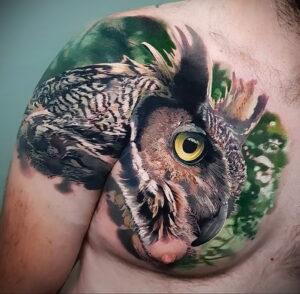 пример рисунка тату сова реализм 15.02.2021 №0101 - owl tattoo realism - tatufoto.com