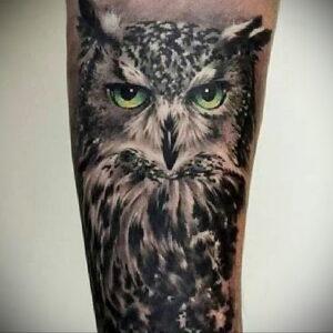 пример рисунка тату сова реализм 15.02.2021 №0103 - owl tattoo realism - tatufoto.com