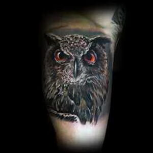 пример рисунка тату сова реализм 15.02.2021 №0113 - owl tattoo realism - tatufoto.com