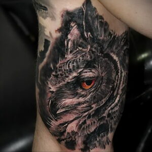 пример рисунка тату сова реализм 15.02.2021 №0116 - owl tattoo realism - tatufoto.com