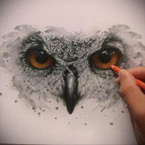 тату глаза совы пример рисунка 15.02.2021 №0003 - owl eyes tattoo - tatufoto.com