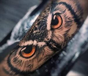 тату глаза совы пример рисунка 15.02.2021 №0006 - owl eyes tattoo - tatufoto.com