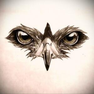 тату глаза совы пример рисунка 15.02.2021 №0012 - owl eyes tattoo - tatufoto.com