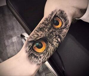тату глаза совы пример рисунка 15.02.2021 №0017 - owl eyes tattoo - tatufoto.com