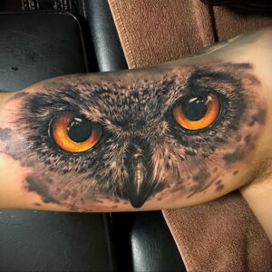 тату глаза совы пример рисунка 15.02.2021 №0024 - owl eyes tattoo - tatufoto.com