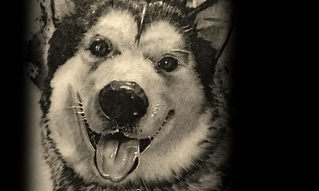Рисунок тату с собакой породы Хаски