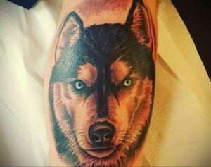 Тату с собакой породы Хаски 08.03.2021 №006 - husky tattoo - tatufoto.com