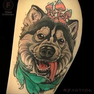 Тату с собакой породы Хаски 08.03.2021 №019 - husky tattoo - tatufoto.com