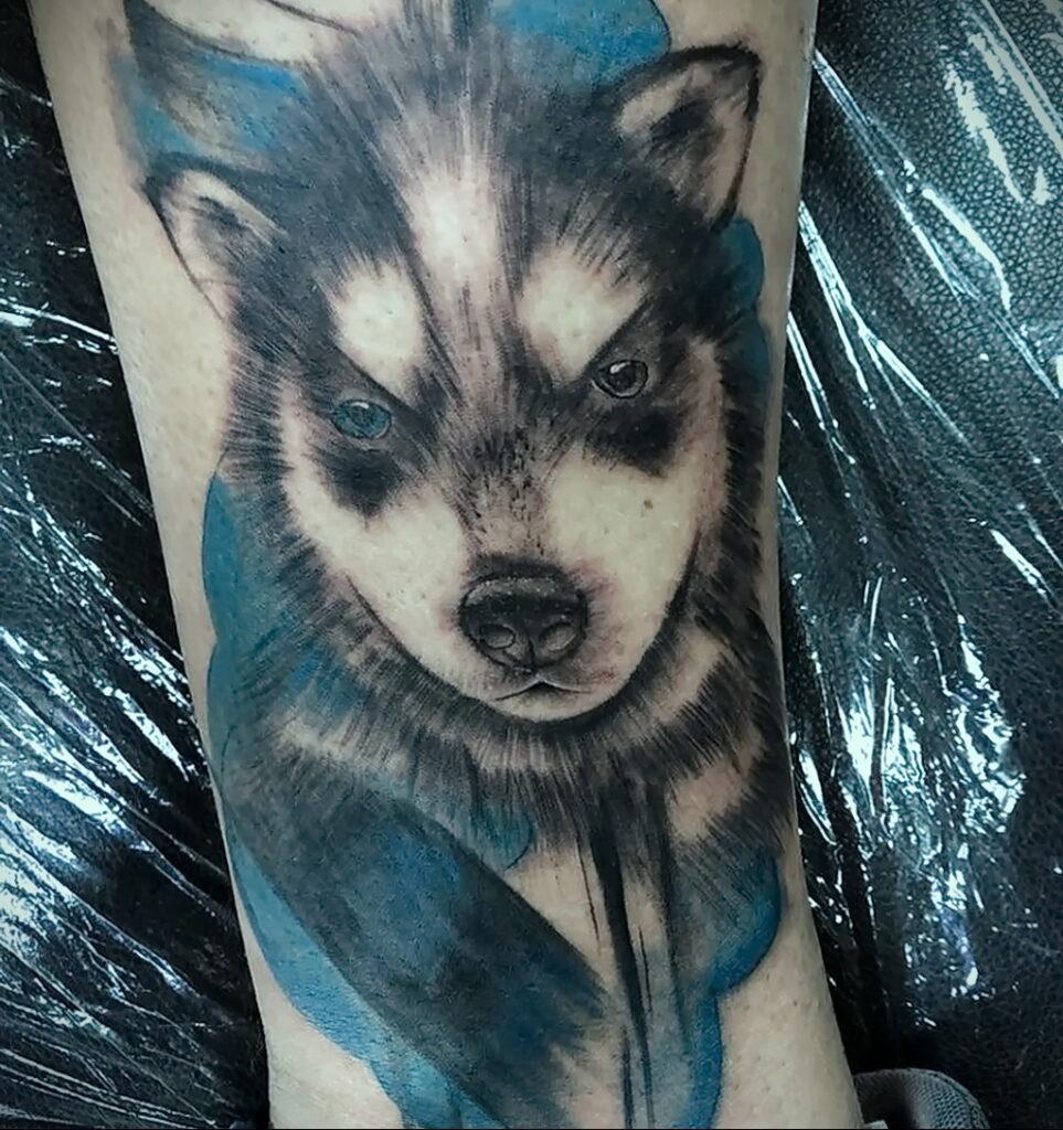 Фото Рисунка тату с собакой породы Хаски 08.03.2021 №285 - husky tattoo - tatufoto.com