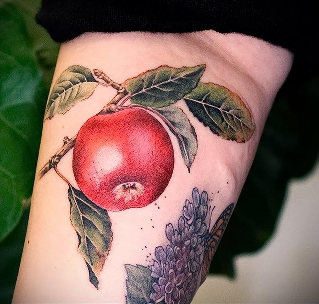 Фото пример рисунка татуировки с яблоком 03.03.2021 №003 - apple tattoo - tatufoto.com