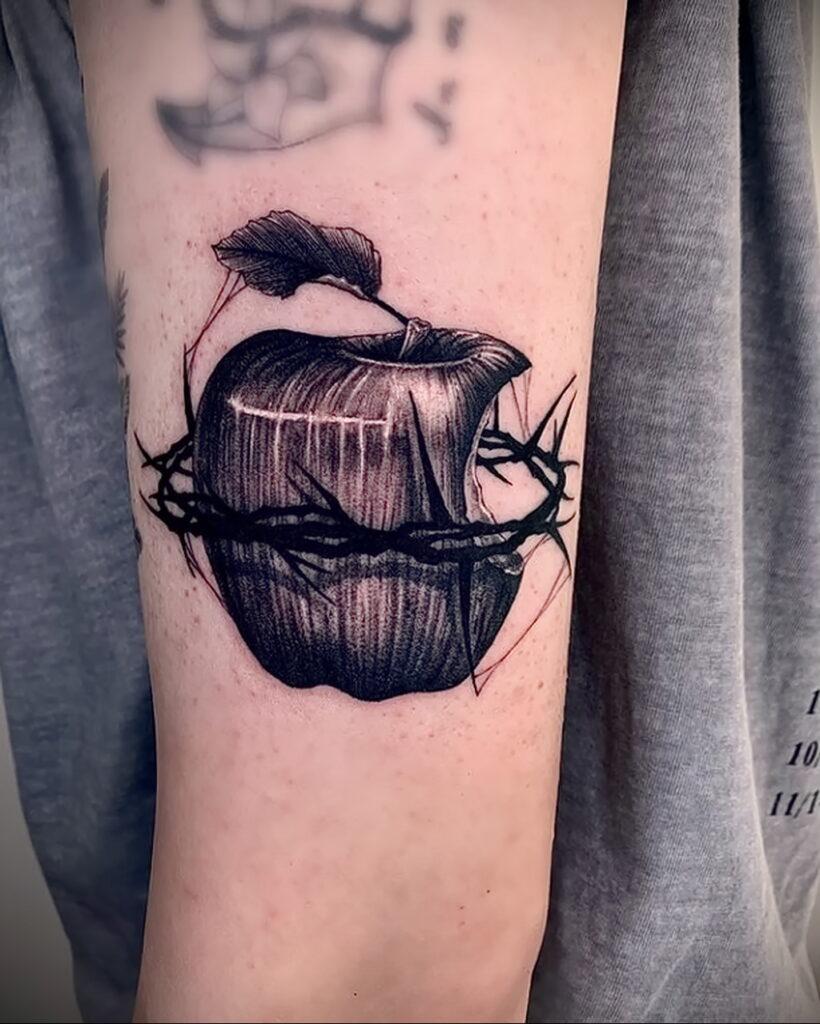 Фото пример рисунка татуировки с яблоком 03.03.2021 №004 - apple tattoo - tatufoto.com