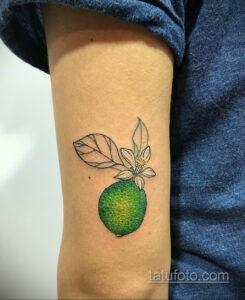 Фото татуировки с лаймом 31.03.2021 №001 - lime tattoo - tatufoto.com