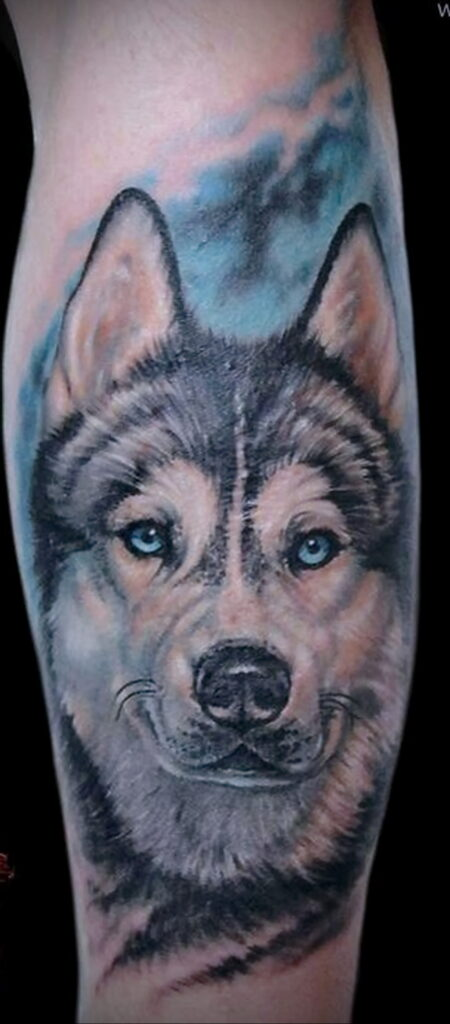 Фото татуировки с собакой породы Хаски 08.03.2021 №15115 - husky tattoo - tatufoto.com