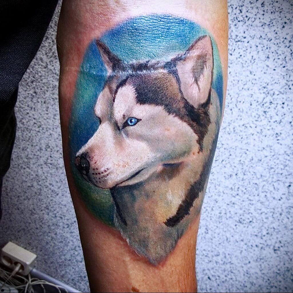 Фото татуировки с собакой породы Хаски 08.03.2021 №18118 - husky tattoo - tatufoto.com