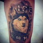 Фото татуировки с собакой породы Хаски 08.03.2021 №30130 - husky tattoo - tatufoto.com