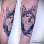 Фото татуировки с собакой породы Хаски 08.03.2021 №52152 - husky tattoo - tatufoto.com
