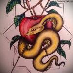 Фото татуировки с яблоком 03.03.2021 №185 - apple tattoo - tatufoto.com