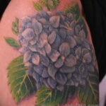 Фото татуировки цветок гортензия 31.03.2021 №127 - tattoo hydrangea - tatufoto.com