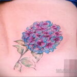 Фото татуировки цветок гортензия 31.03.2021 №137 - tattoo hydrangea - tatufoto.com
