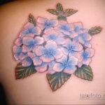 Фото татуировки цветок гортензия 31.03.2021 №139 - tattoo hydrangea - tatufoto.com