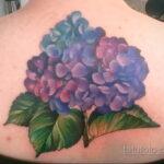 Фото татуировки цветок гортензия 31.03.2021 №140 - tattoo hydrangea - tatufoto.com