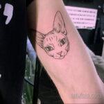 Фото интересного рисунка татуировки 04.04.2021 №271 - cool tattoo - tatufoto.com