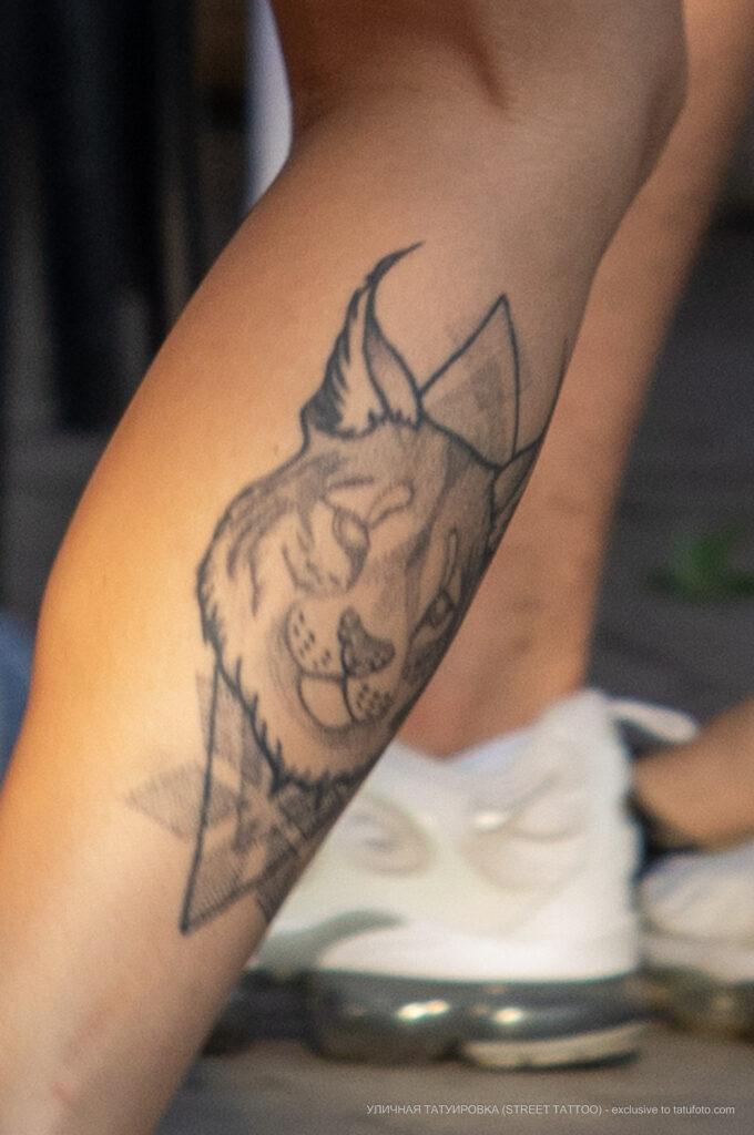 Тату волк на правой ноге девушки – Фото Уличная тату (street tattoo) № 13 – 27.06.2021 3
