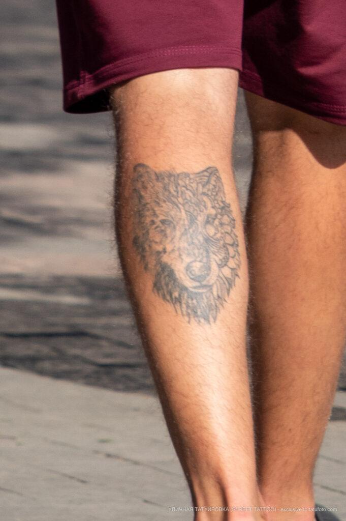 Тату морда волка на левой икре парня – Фото Уличная тату (street tattoo) № 13 – 27.06.2021 2