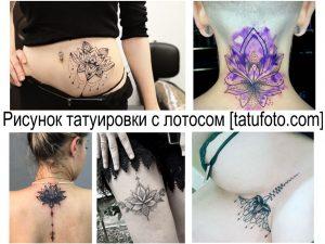 Рисунок татуировки с лотосом - информация про особенности и фото тату с лотосом